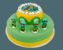3D Ninja Turtle Taart Reviews