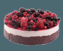 Premium Fruit Bavarois