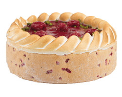 Premium Gâteau Russe