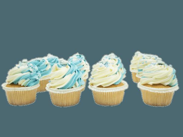 Cupcakes Newborn Boy