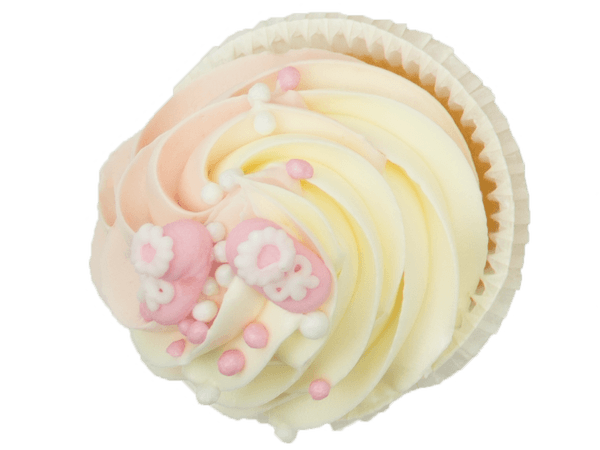Cupcake Alternatief Beschuit met Muisjes